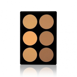 Prefect Touch Dual Foundation Palette
